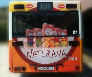 avtobusi_20